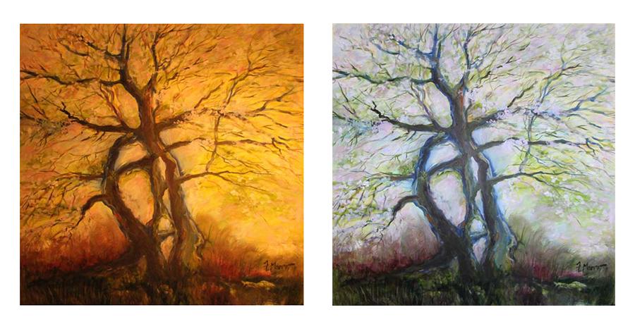 Apple Tree Portrait (99x99, Oil on Canvas)