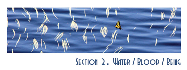Section 2: Water/Blood/Being