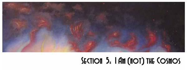 Section 5: I am (not) the Cosmos