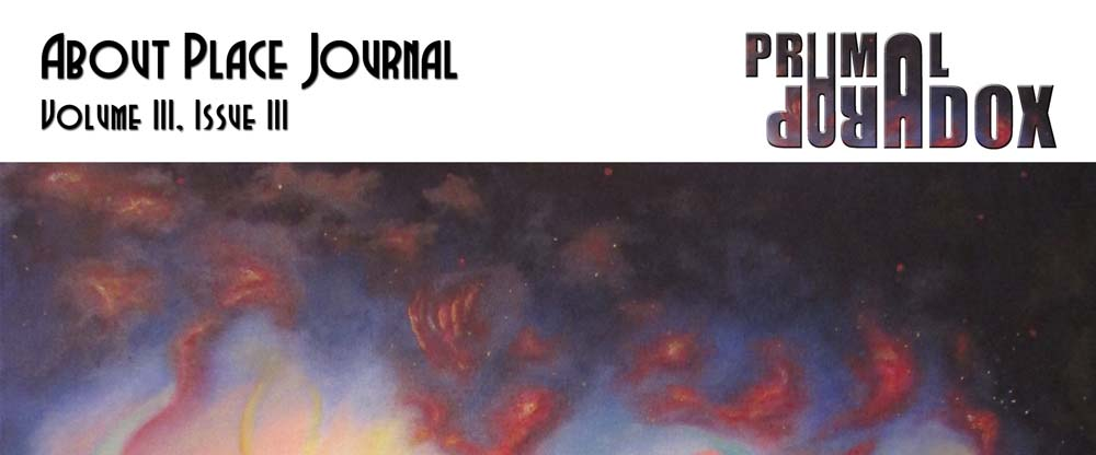 About Place Journal Vol III Issue III Primal Paradox