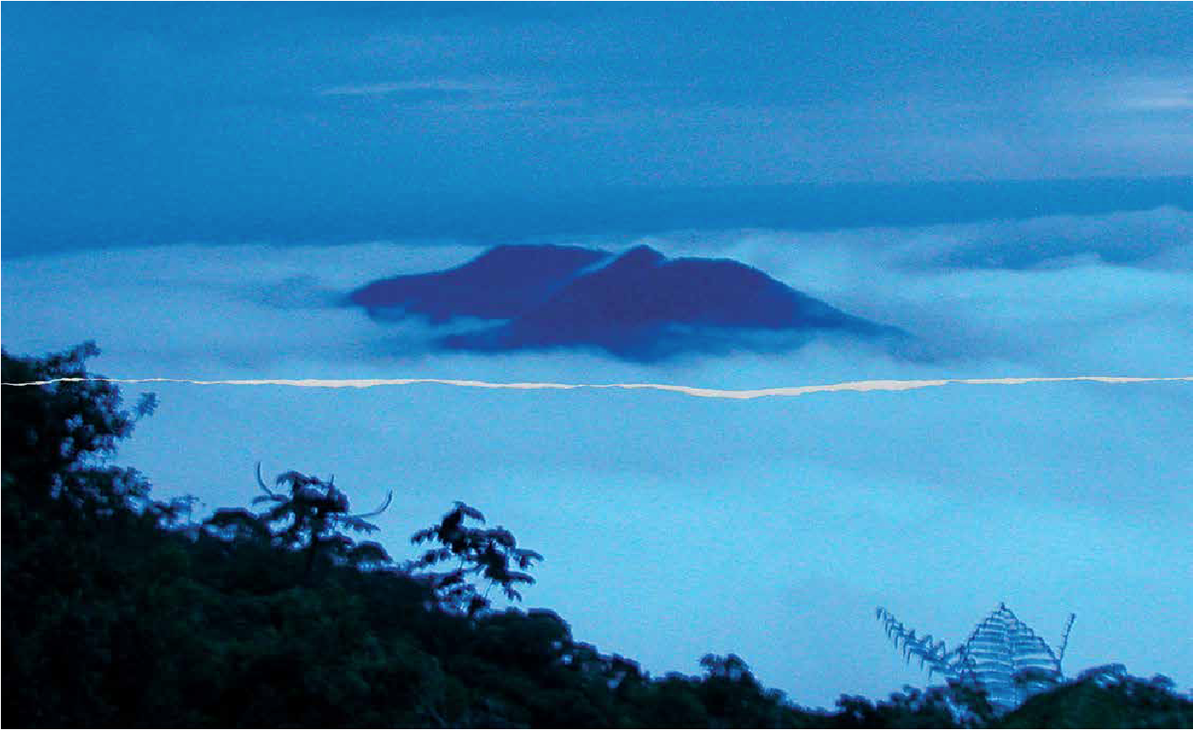 Brasilis Island, 2014 from Mist of the Earth by Denise Milan