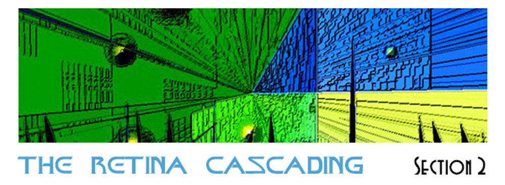 Section 2: The Retina Cascading