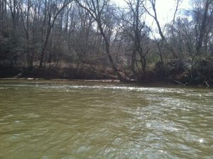 Confluence with the Lawsons Fork, Pacolet River