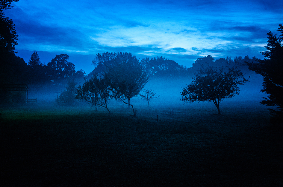 Blue Fog photo by Ed Croom
