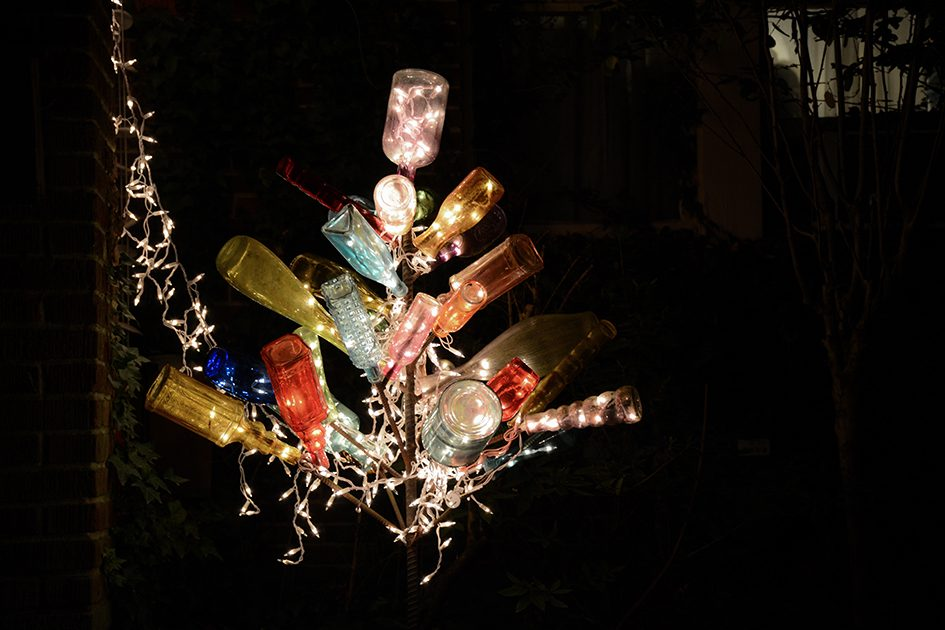 Bottletree, Mid-December photography by Caleb Fisher-Wirth
