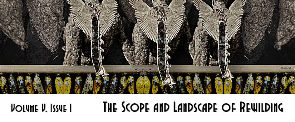 The Scope and Landscape of Rewilding
