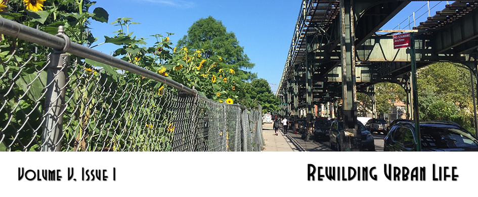 Rewilding Urban Life