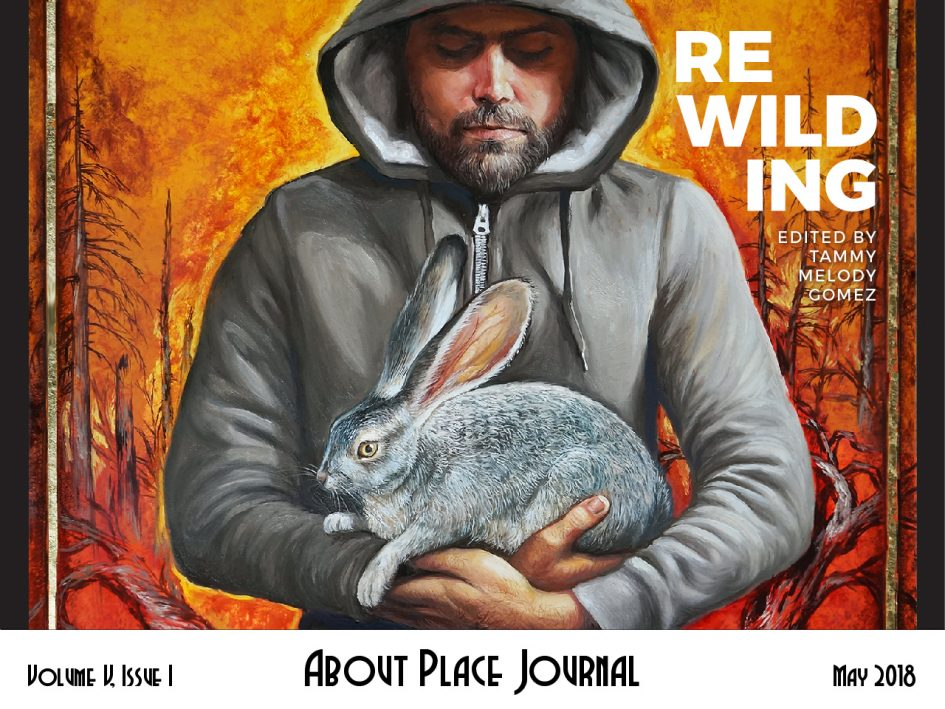 man in a hoodie holding a wild rabbit in front of a fiery landscape / Rewilding / Edited by Tammy Melody Gomez