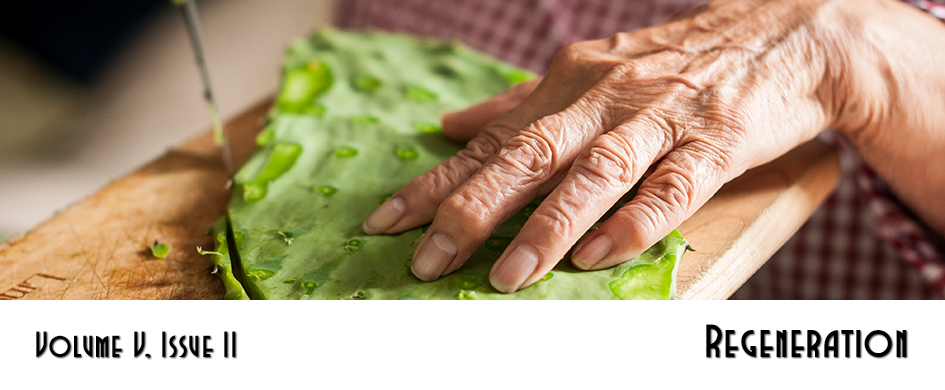 Section 5: Regeneration – photo of an elderly woman's hands cutting nopales