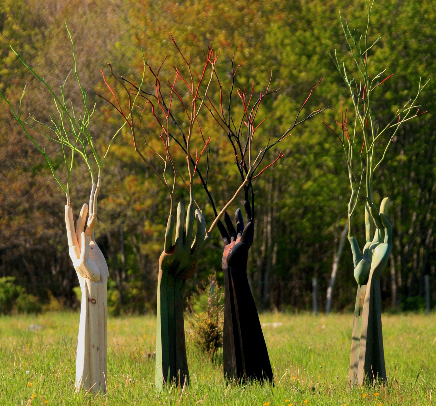 photo of arm/hand/branch sculptures a in a grove