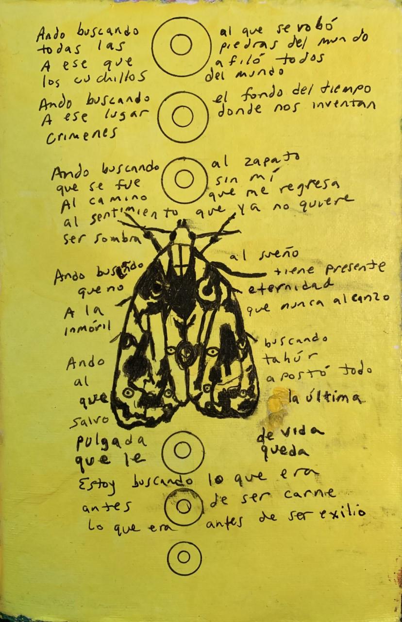 Ando buscando poem by Octavio Quintanilla