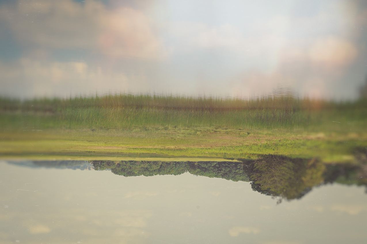 landscape photo of grass and trees reflected in water