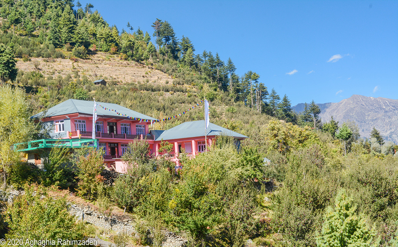 A bright pink house on a slope in the Himalayas, surrounded by apple orchards