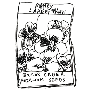 small black and white sketch of a pansy seed packet