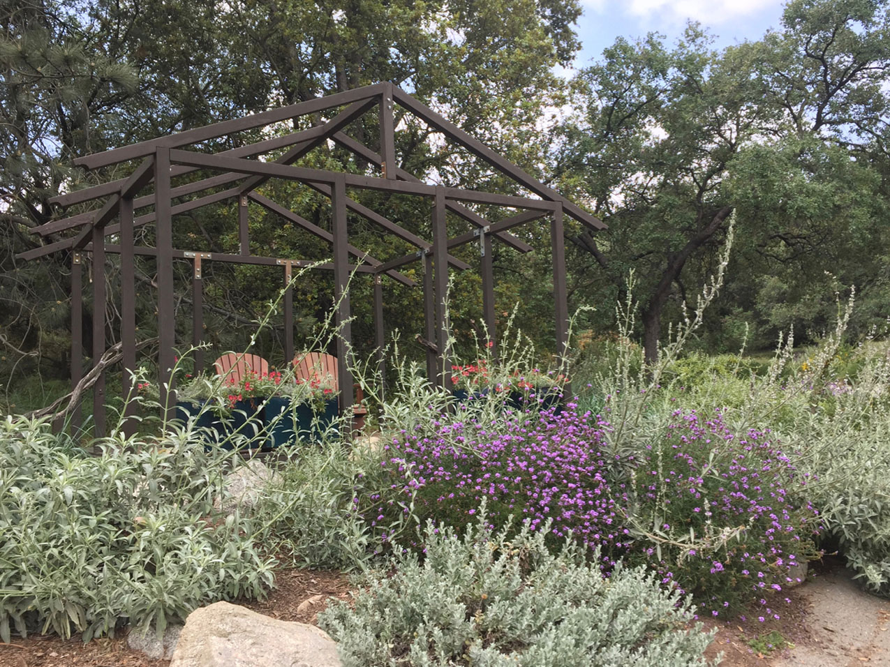 a pergola with two adirondack chairs surrounded by sagebrush and other plants in southern California
